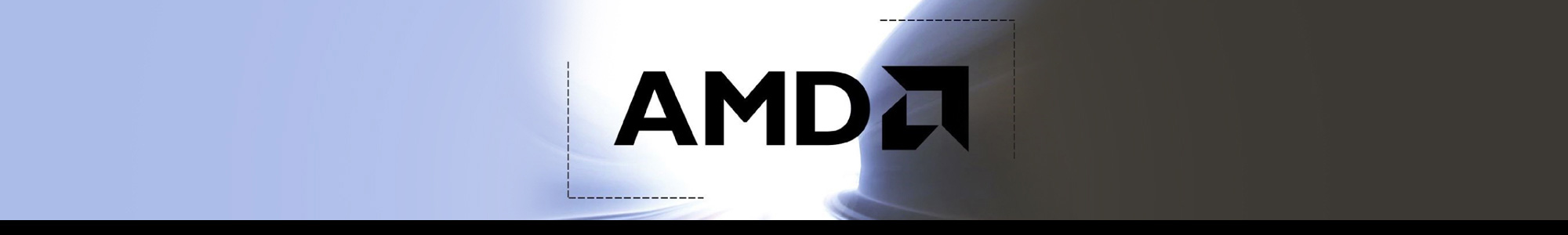 zones amd partner